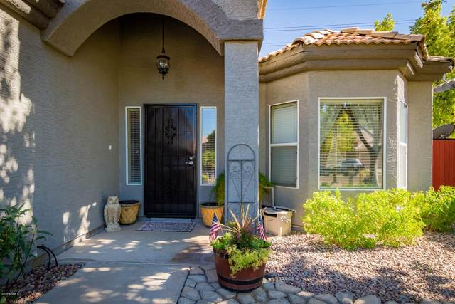 1901 E Marquette Drive, Gilbert, AZ 85234 (MLS #6111007) :: The Bill and Cindy Flowers Team