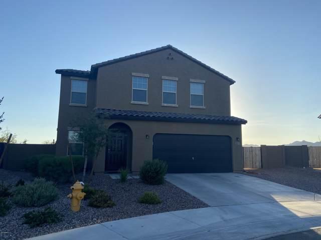 20275 W Mesquite Drive, Buckeye, AZ 85326 (MLS #6111023) :: The Laughton Team