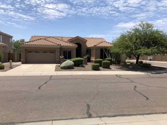 4703 E Via Montoya Drive, Phoenix, AZ 85050 (MLS #6111076) :: Devor Real Estate Associates