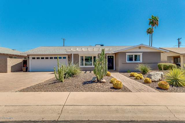 6426 E Sheridan Street, Scottsdale, AZ 85257 (MLS #6111136) :: The Laughton Team