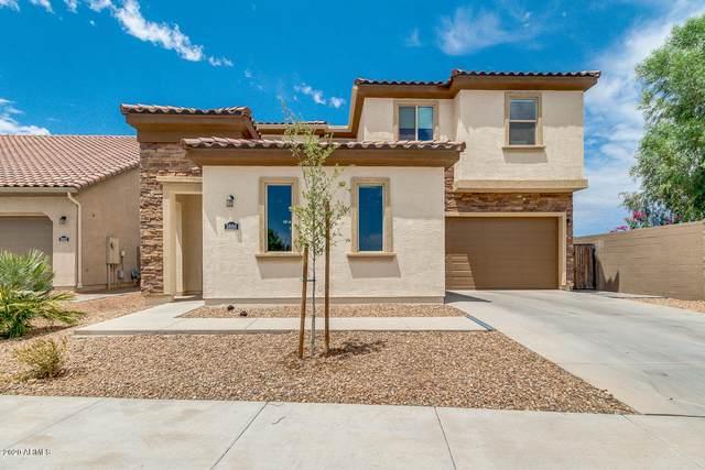 3866 E Lantana Drive, Chandler, AZ 85286 (MLS #6111192) :: My Home Group