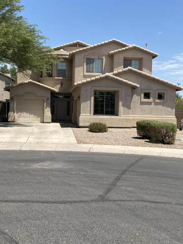 43854 W Griffis Drive, Maricopa, AZ 85138 (MLS #6111212) :: Lux Home Group at  Keller Williams Realty Phoenix