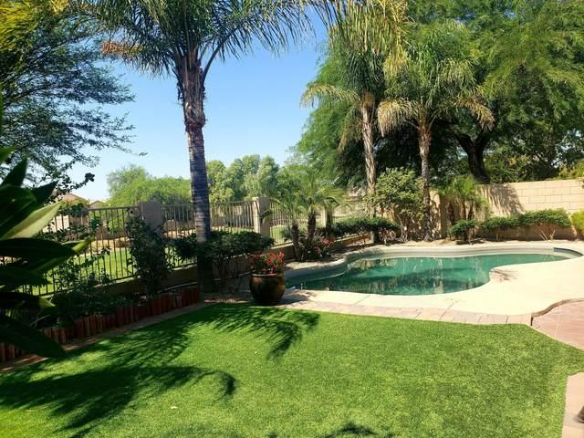 9205 W Serrano Street, Phoenix, AZ 85037 (MLS #6111300) :: Dijkstra & Co.