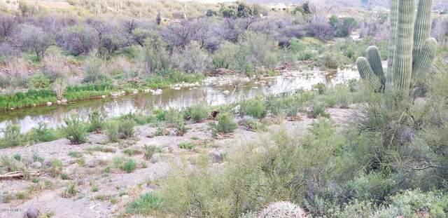 40585 N 51ST Street, Cave Creek, AZ 85331 (MLS #6111312) :: The Bill and Cindy Flowers Team