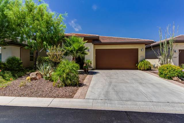 13152 W Lone Tree Trail, Peoria, AZ 85383 (MLS #6111327) :: Long Realty West Valley