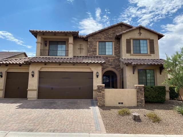 2203 N Steele, Mesa, AZ 85207 (MLS #6111337) :: BVO Luxury Group