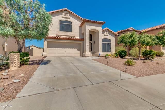 2160 S 160TH Drive, Goodyear, AZ 85338 (MLS #6111399) :: The Helping Hands Team