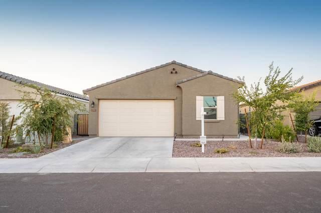 9820 W Getty Drive, Tolleson, AZ 85353 (MLS #6111409) :: Kepple Real Estate Group