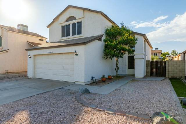 23802 N 36TH Drive, Glendale, AZ 85310 (MLS #6111414) :: The Laughton Team