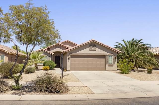 2388 E Hancock Trail, Casa Grande, AZ 85194 (MLS #6111439) :: Brett Tanner Home Selling Team