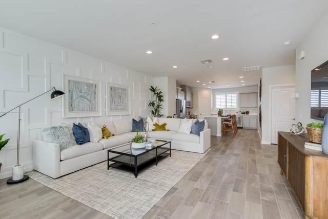 1255 N Arizona Avenue #1155, Chandler, AZ 85225 (MLS #6111478) :: neXGen Real Estate