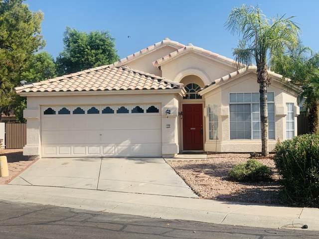 1458 N Birch Street, Gilbert, AZ 85233 (MLS #6111509) :: Lux Home Group at  Keller Williams Realty Phoenix