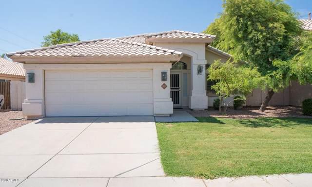 3137 E Oraibi Drive, Phoenix, AZ 85050 (MLS #6111513) :: Klaus Team Real Estate Solutions