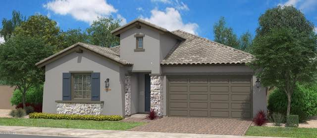 18948 N Arbor Drive, Maricopa, AZ 85138 (MLS #6111540) :: The Bill and Cindy Flowers Team