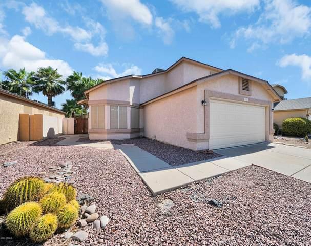 3101 E Taro Lane, Phoenix, AZ 85050 (MLS #6111550) :: The W Group