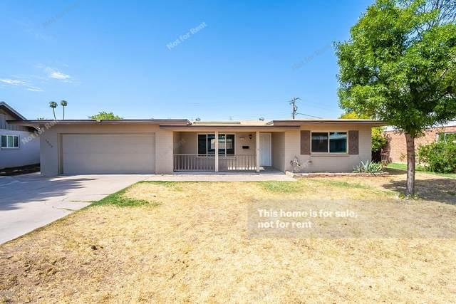 1503 E 3RD Street, Mesa, AZ 85203 (MLS #6111551) :: Klaus Team Real Estate Solutions