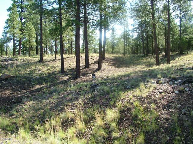 2531 E Del Rae Drive, Flagstaff, AZ 86005 (MLS #6111669) :: The C4 Group