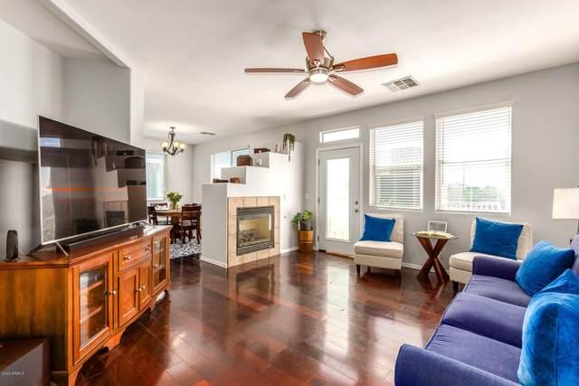 1243 E Julian Drive, Gilbert, AZ 85295 (MLS #6111752) :: The Daniel Montez Real Estate Group