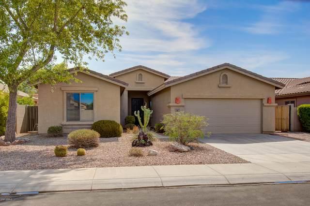 4565 S Tambor, Mesa, AZ 85212 (MLS #6111779) :: Klaus Team Real Estate Solutions
