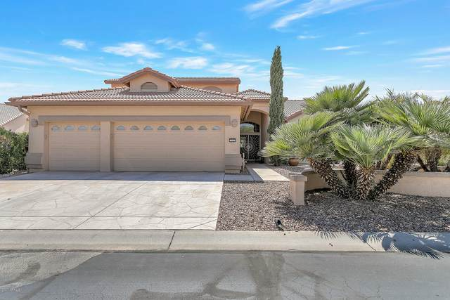 3162 N 150TH Drive, Goodyear, AZ 85395 (MLS #6111787) :: The Riddle Group