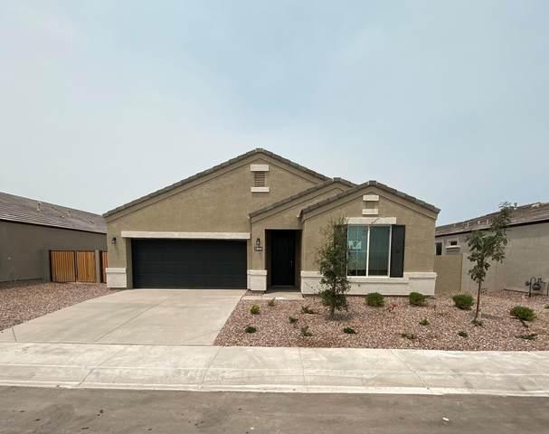 8444 W Pleasant Oak Way, Florence, AZ 85132 (MLS #6111799) :: Lux Home Group at  Keller Williams Realty Phoenix