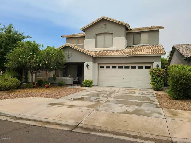 4136 N Dania Court, Litchfield Park, AZ 85340 (MLS #6111808) :: Long Realty West Valley