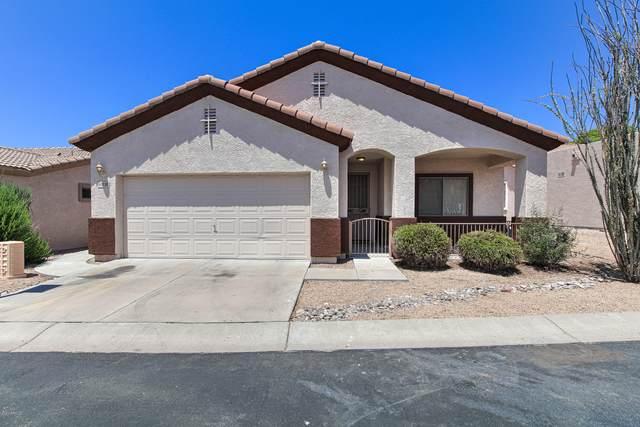 6702 E Roland Street, Mesa, AZ 85215 (MLS #6111824) :: The Daniel Montez Real Estate Group