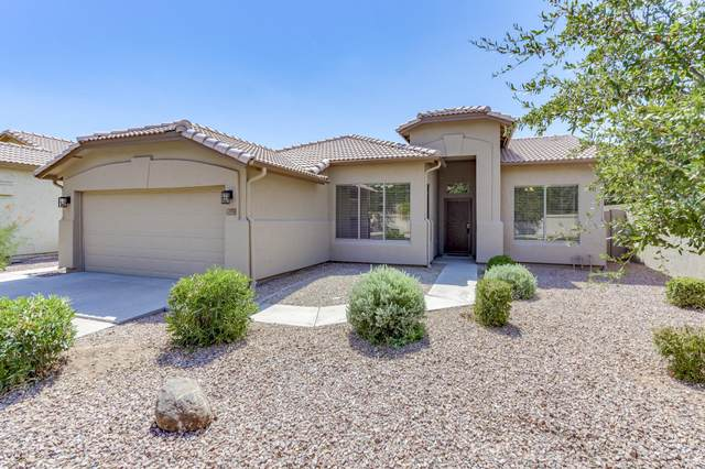 768 N Cambridge Street, Gilbert, AZ 85233 (MLS #6111835) :: The Daniel Montez Real Estate Group