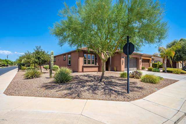 1746 E Harmony Way, Queen Creek, AZ 85140 (MLS #6111871) :: The Bill and Cindy Flowers Team