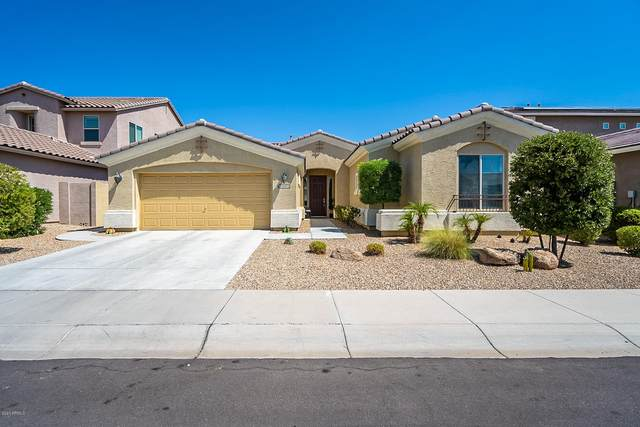 18230 W Young Street, Surprise, AZ 85388 (MLS #6111909) :: Arizona Home Group