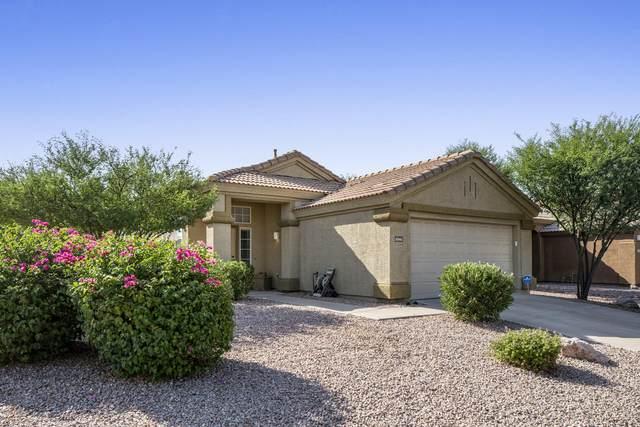 31061 N 44TH Way, Cave Creek, AZ 85331 (MLS #6111911) :: Scott Gaertner Group