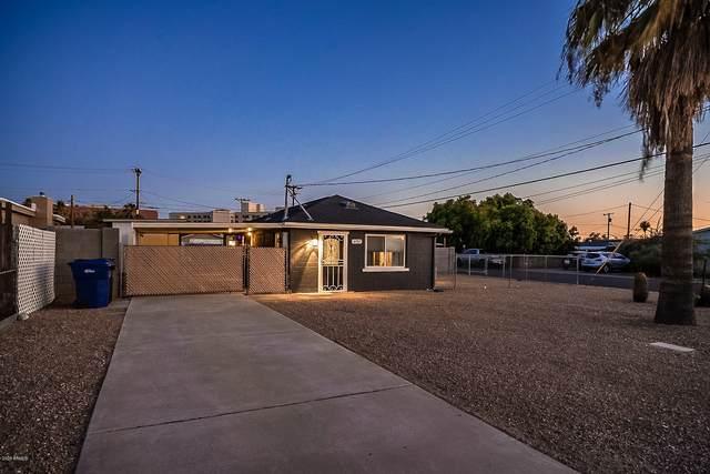 6707 E Alder Avenue, Mesa, AZ 85206 (MLS #6111947) :: NextView Home Professionals, Brokered by eXp Realty