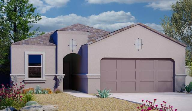 2414 E Santa Barbara Trail, Casa Grande, AZ 85194 (MLS #6111999) :: Brett Tanner Home Selling Team