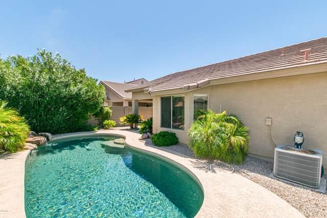 900 E Payton Street, San Tan Valley, AZ 85140 (MLS #6112040) :: The Bill and Cindy Flowers Team