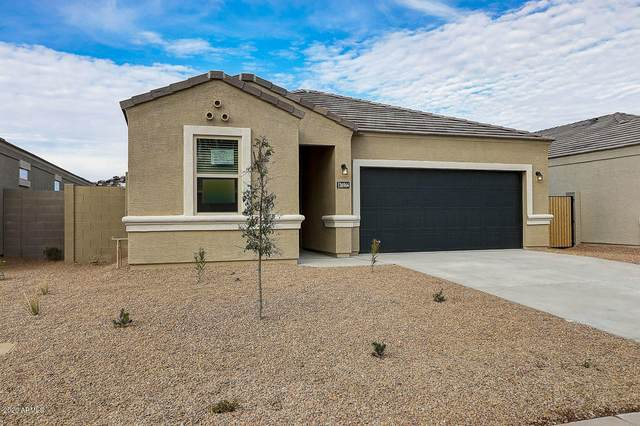 272 S San Jose Lane, Casa Grande, AZ 85194 (MLS #6112060) :: The W Group
