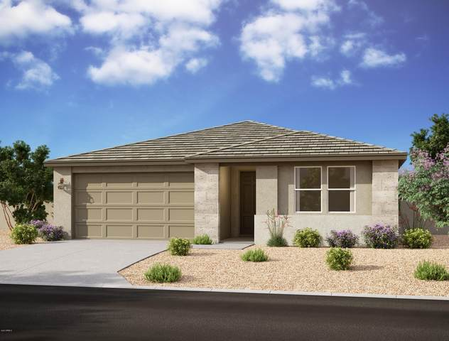 26212 N Thornhill Drive, Peoria, AZ 85383 (MLS #6112086) :: The Laughton Team