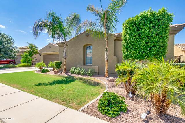 3385 E Cardinal Way, Chandler, AZ 85286 (MLS #6112097) :: NextView Home Professionals, Brokered by eXp Realty