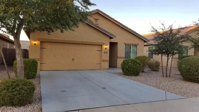 10570 E Sunflower Lane E, Florence, AZ 85132 (MLS #6112102) :: Klaus Team Real Estate Solutions