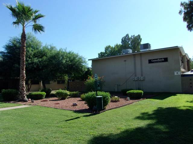 825 N Hayden Road C15, Scottsdale, AZ 85257 (MLS #6112111) :: Klaus Team Real Estate Solutions