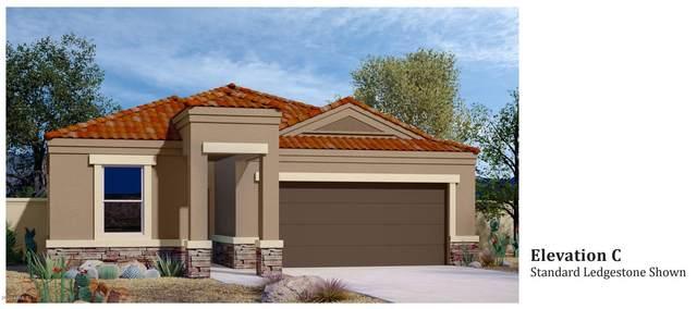 2442 E Santa Barbara Trail, Casa Grande, AZ 85194 (MLS #6112148) :: Dave Fernandez Team   HomeSmart