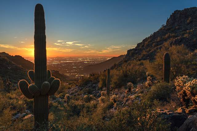11602 E Del Cielo Drive, Scottsdale, AZ 85255 (MLS #6112150) :: Long Realty West Valley