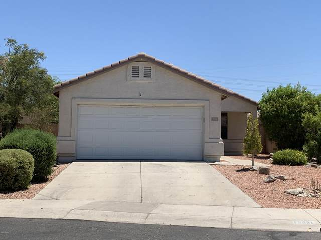 16821 N 113TH Drive, Surprise, AZ 85378 (MLS #6112159) :: The Laughton Team