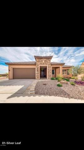 5977 W Silver Leaf Court, Florence, AZ 85132 (MLS #6112282) :: The Helping Hands Team