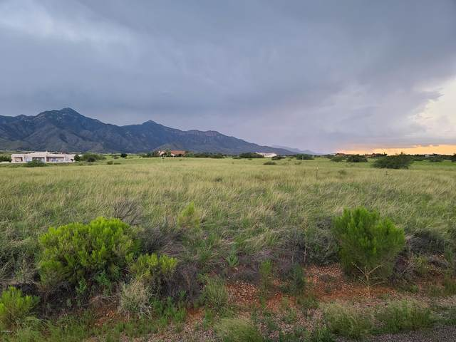 00 S Coatimundi Court, Hereford, AZ 85615 (MLS #6112291) :: The Daniel Montez Real Estate Group