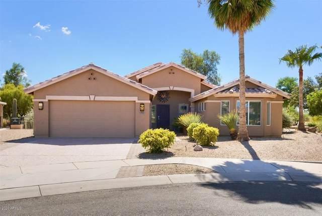 255 N San Juan Trail, Casa Grande, AZ 85194 (MLS #6112295) :: The Helping Hands Team