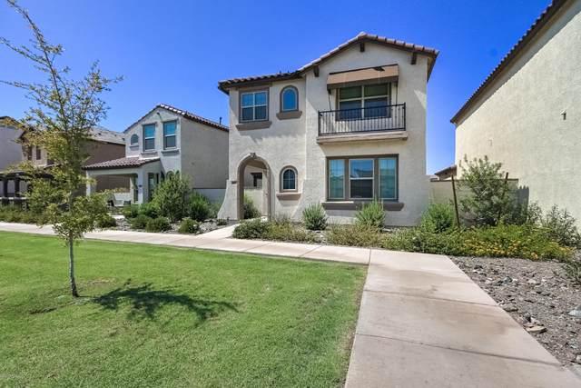 9817 E Specter Drive, Mesa, AZ 85212 (MLS #6112358) :: The Bill and Cindy Flowers Team