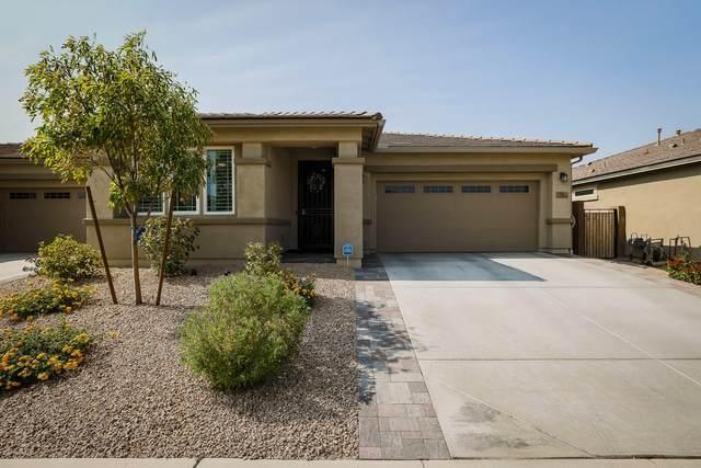 14557 W Reade Avenue, Litchfield Park, AZ 85340 (MLS #6112397) :: Devor Real Estate Associates