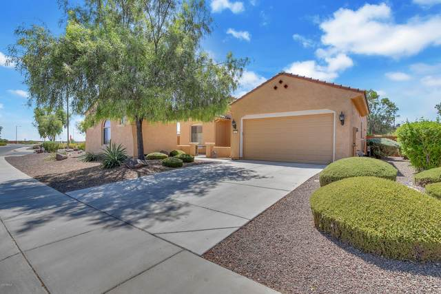 26129 W Tina Lane, Buckeye, AZ 85396 (MLS #6112408) :: Long Realty West Valley