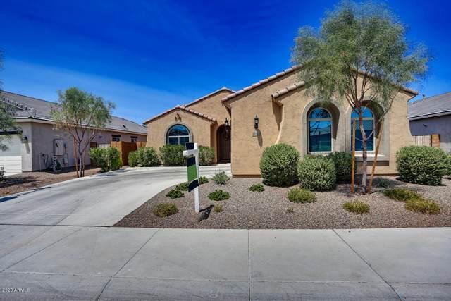 25984 W Oraibi Drive, Buckeye, AZ 85396 (MLS #6112449) :: Keller Williams Realty Phoenix
