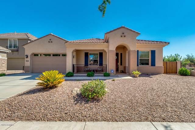 20233 E Avenida Del Valle, Queen Creek, AZ 85142 (MLS #6112462) :: Power Realty Group Model Home Center